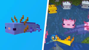 How to Get a Blue Axolotl in Minecraft in 4 Easy Ways
