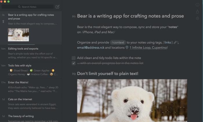bear notes app