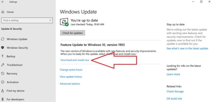 Windows Update download and install now