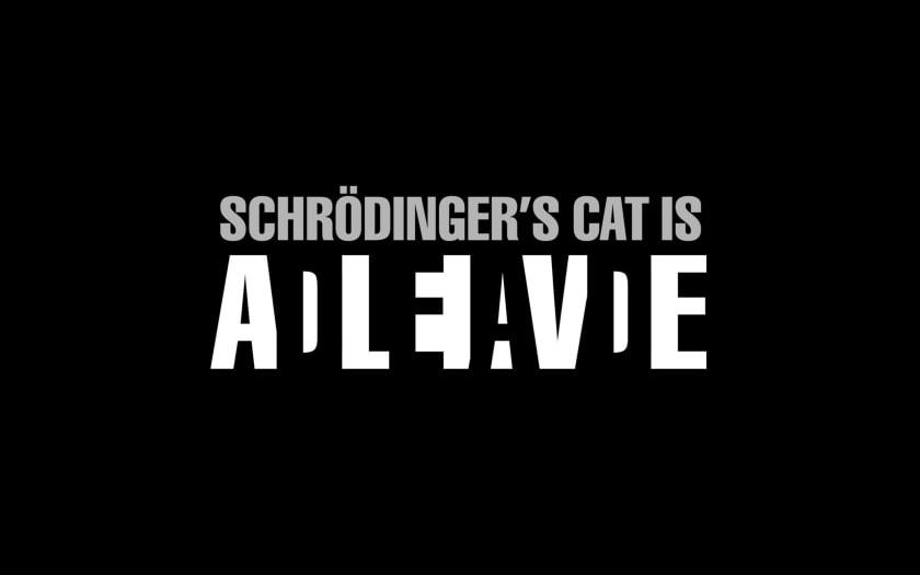 Fondo de pantalla geek con gato de Schrodinger