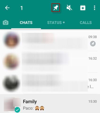 Pin chats