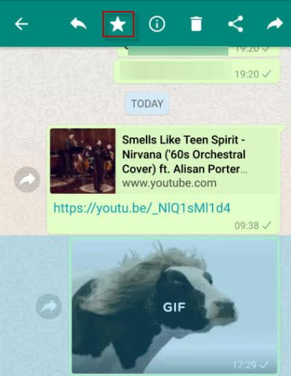 whatsapp cow