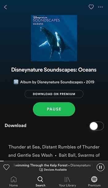 Disneynature Soundscapes: Ocean