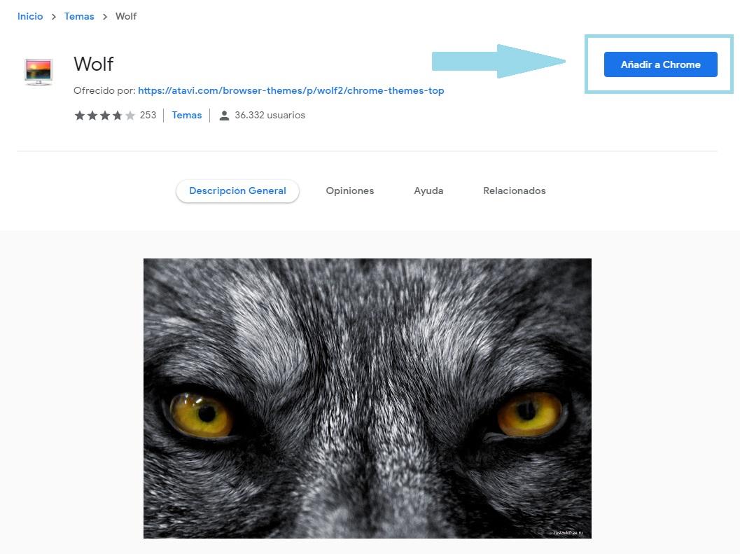 Cómo cambiar y descargar temas para Google Chrome