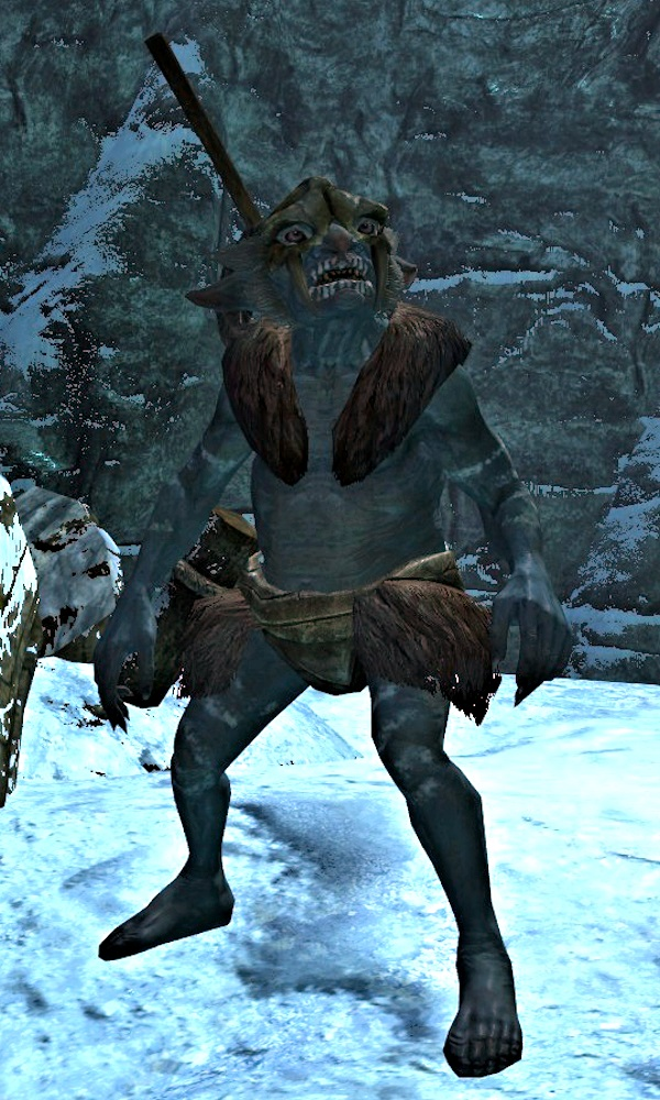 Skyrim's best and most useful followers