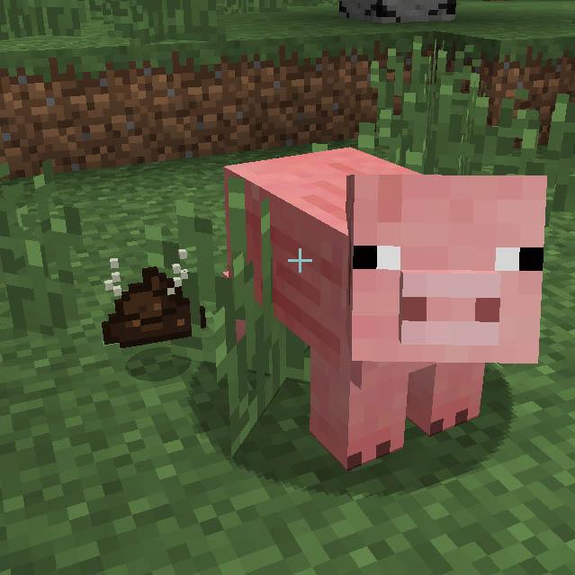 Pig Manure Minecraft