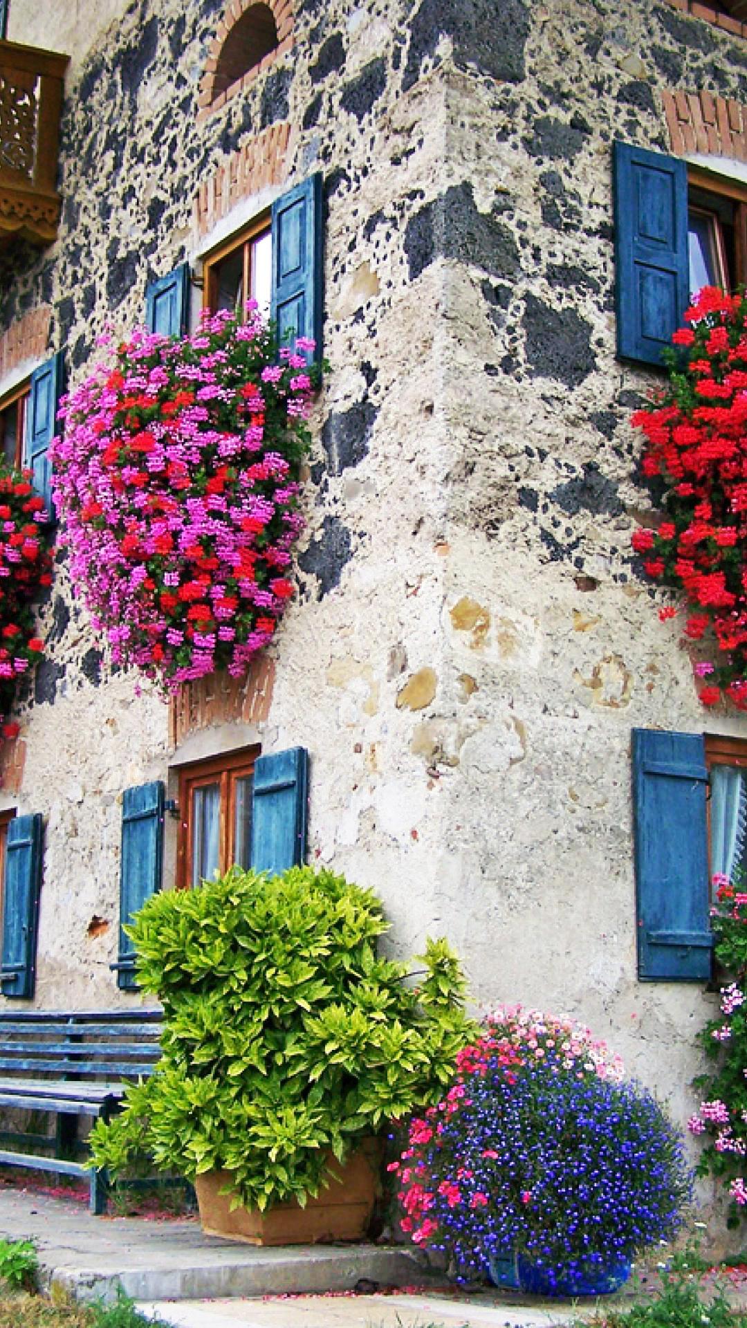 Fondo de pantalla fachada con flores