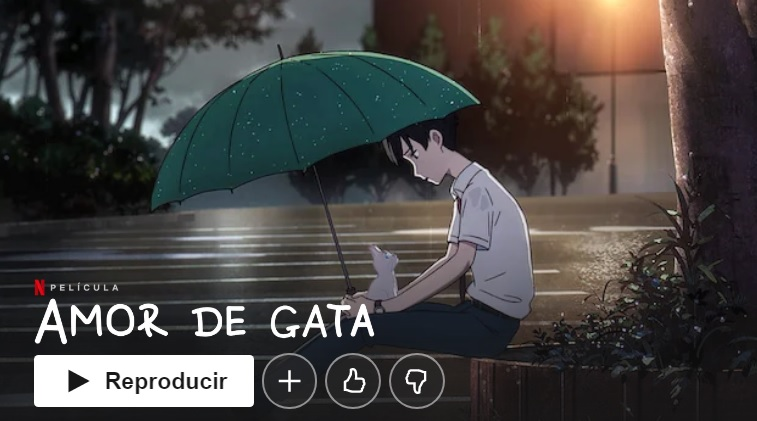 Amor de gata en Netflix