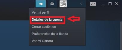 Cómo acceder a los detalles de cuenta de Steam
