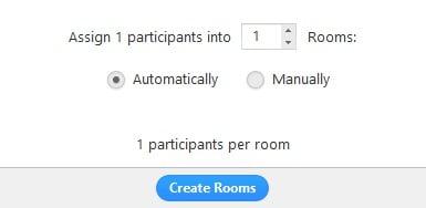 Breakout Rooms de Zoom