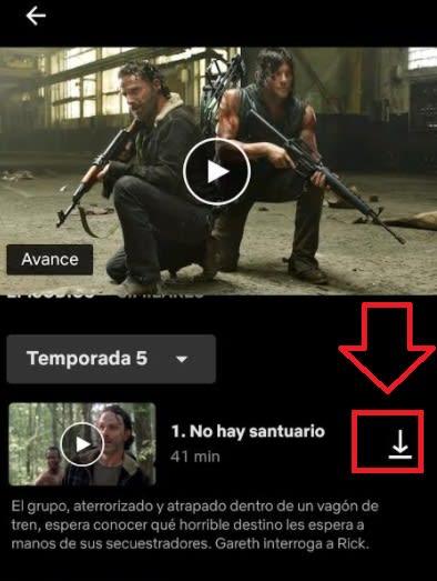 Download episodes on Netflix